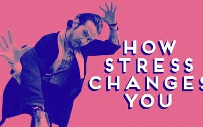 HOW STRESS CHANGES YOU