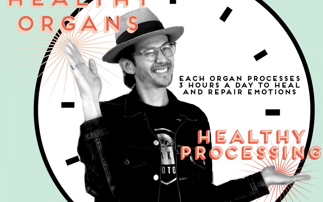 HEALTHY ORGANS – HEALTHY PROCESSING